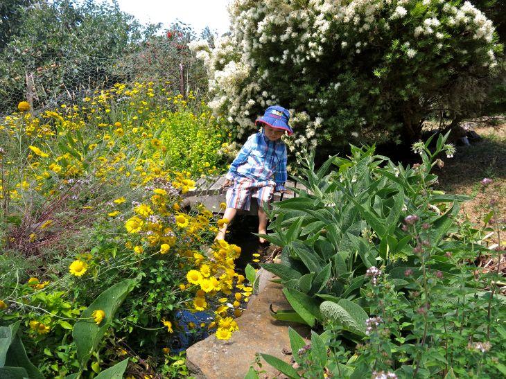 Elvenhome_flower garden