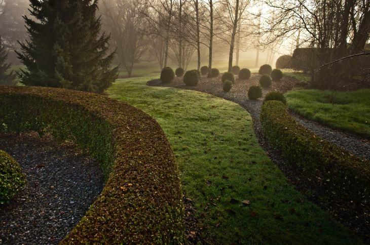 Wychwood misty morning